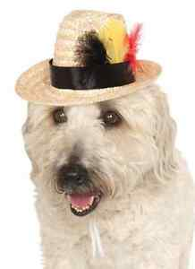 Feathered Fedora Hat Straw Fancy Dress Halloween Pet Dog Cat Costume Accessory
