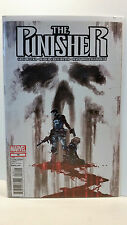 Marvel Comics Volume 9 The Punisher 16 Bagged and Boarded  2011 to 2012