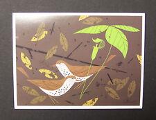 "Charles/Charley Harper Notecards ""Woodthrush"" 4 Pack w/Envelopes"