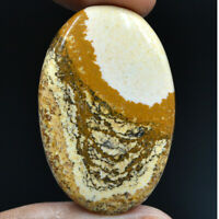Cts. 44.30 Natural Landscape Picture Jasper Cabochon Oval Cab Loose Gemstone