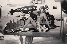 WW2 Picture Photo Pin Up NOSE ART Photo B-24 Bomber 43rd Bomb Grp 64th Sqdn 2119