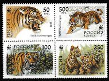Tigers WWF block of 4 mnh 1993 Russia #6181a panthera tigris cubs