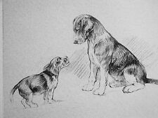 K.F. Barker 1933 Beagle Puppy Looking for Daddy Father Vintage Art Print Matted