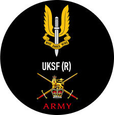 BRITISH ARMY SAS UKSF RESERVES BADGE