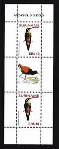 [SUV1418] Surinam Suriname 2006 Birds Vögel Oiseaux Miniature Sheet with tab MNH