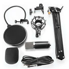 NEW Professional Condenser Microphone Mic Studio Sound Recording + Arm Stand Set