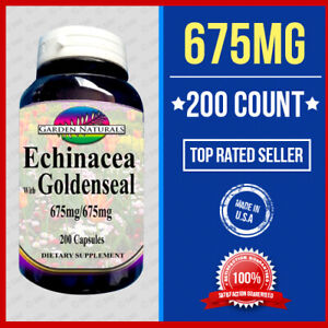ECHINACEA  GOLDENSEAL COLD FLU IMMUNE SUPPORT 200 Caps 1350mg Quality Made USA
