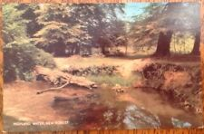 New Forest Highland Water Vintage Postcard Lymington River Ancient Forest