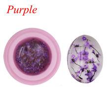 1 Bottle Natural Dried Flowers Series Nail UV GEL Polish DIY Manicure Decoration Purple