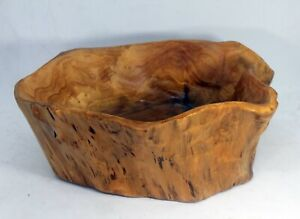 Rustic Hand Carved Burl Wood Fruit Nut Bowl Natural Art One Piece