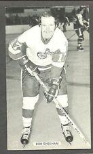 1976 J.D.McCarthy Postcard Red Wings' Bob Sheehan