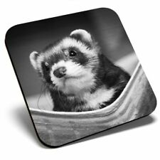 Square Single Coaster bw - Ferret Hammock Pet Rodent Animal #37246
