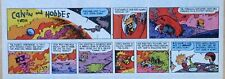 Calvin and Hobbes by Bill Watterson - lot of 52 Sunday comics - Complete 1991