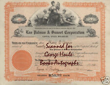 MARY O'CONNOR~STOCK CERTIFICATE~LAS PALMAS & SUNSET~'21