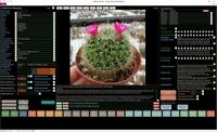 New 2020 Version Cactus and Succulent Collector Database Professional Software