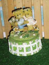 MUSICAL AND ROTATING TEDDY BEAR MUSIC BOX