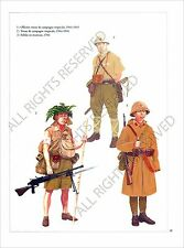 PLANCHE UNIFORMS PRINT WWII JAPAN ARMY ARMEE JAPON Tropical Campaign Suit