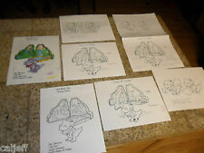 7 PIECE LOT THE LAND BEFORE TIME ORIGINAL TOY ART CHOMPER PLAYSET BURGER KING