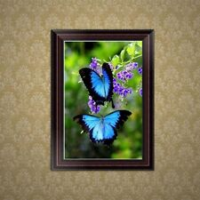 DIY 5D Diamond Embroidery Painting Butterfly Cross Stitch Craft Home Wall Decor