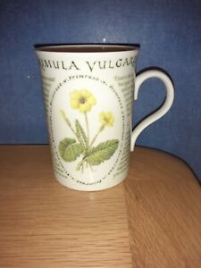"National Trust  Bone China Mug ""Floral Cameo "" Primrose"