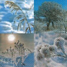 """5 Servietten """"Ein Wintertag"""" 33x33 Napkins Winter Gräser Bäume Schnee Kristalle"""