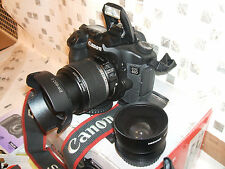 CANON EOS 40D PROFESSIONAL-USE DIGITAL SLR CAMERA with THREE LENSES
