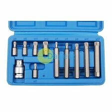 "11pc Spline Bit Set de 1/2 ""Socket M5 M6 M8 M10, M12 Con Funda"