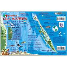 Franko Maps Isla Mujeres Reef Dive Creature Guide 6 X 9 Inch