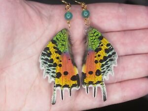 Real butterfly wings earrings, sunset moth entomology gift, onyx, Laminated