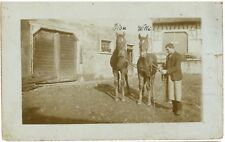 FINE HORSES Groom Stable Boy Hand Vintage Real Photo PC Owingen 1922