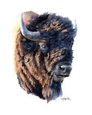 BUFFALO Watercolor Painting 8 x 10 Bison Wildlife ART Print by Artist DJ Rogers