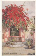 MADIERA :FLOWERS AND GARDENS OF MADEIRA-The Scarlet Bourgainvillea-DU CANE-BLACK