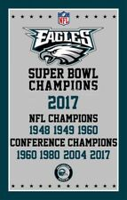 Philadelphia Eagles Super Bowl Champions Flag Lii Championship Banner