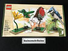 LEGO 21301 Ideas Cuusoo Wildvögel Set Birds New Neu OVP MISB