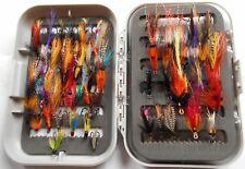 Le Saumon, la truite de mer et la Truite Arc-en-ciel 94 pêche mouche en cas de NEUF