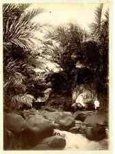 Martinique, Fort de France  Vintage albumen print.  Tirage albuminé  12x17