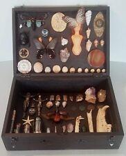 Boîte Cabinet de Curiosités Steampunk Oddities