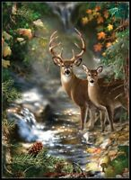Deer Creek - Counted Cross Stitch Pattern/Kit - Color Symbols Charts