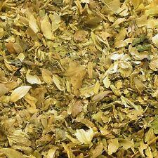 HOPS CONES Stroboli lupuli DRIED HERB, Natural Herbal Tea 100g