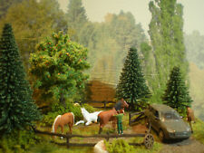 H0 Diorama HO 1:87 Pferde Tiere Weide Koppel Bauernhof Wiese Modellbahn