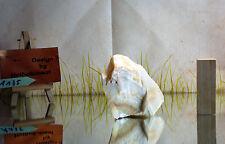 #A135 Bonsai Suiseki - Gestaltungsstein - Mineralie Geschenk  Rarität