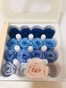 Vermeille Partial Box Of 14 Preserved Mini Roses - Blue Plus 1 Pink - Infinity