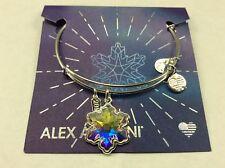 Alex and Ani Crystal Snowflake Bangle Bracelet Shiny Silver