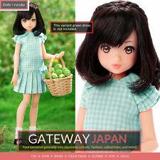 Apple Orchard ruruko doll Girl - Green Gingham dress ver - Petworks momoko! NEW