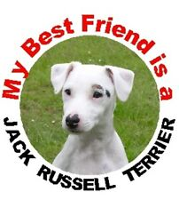 2 White Jack Russell Terrier Car Stickers By Starprint
