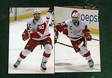 Two One of a Kind 4x6 Photos, Henrik Zettenberg, Detroit Red Wings