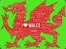 I Love Galles Insegna Grande in Metallo ( Og 4030)