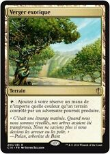 MTG Magic C16 - Exotic Orchard/Verger exotique, French/VF