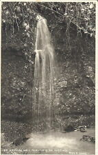 Sussex: Dripping Well, Fairlight Glen, Hastings - Unposted 1908 - Judges