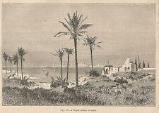 A2366 Tripoli vista dal mare - Xilografia - Stampa Antica del 1895 - Engraving